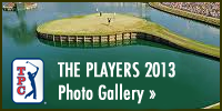 View the TPC Gallery