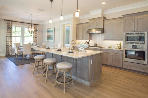 Gray Wash Kitchen Cabinets